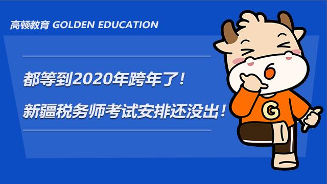 都等到2020跨年了!新疆税务师考试安排还没出!