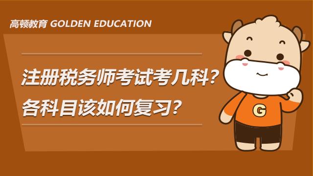 注册税务师考试考几科?各科目该如何复习?