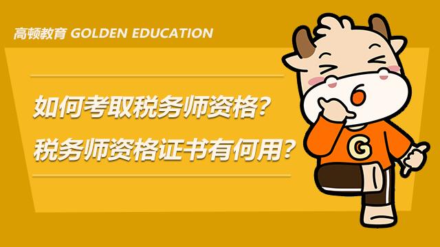 如何考取税务师资格?税务师资格证书有何用?