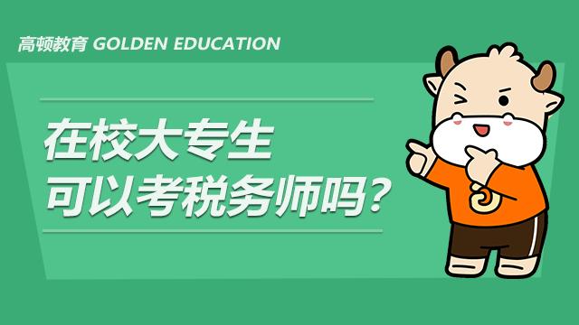 在校大专生可以考税务师吗?