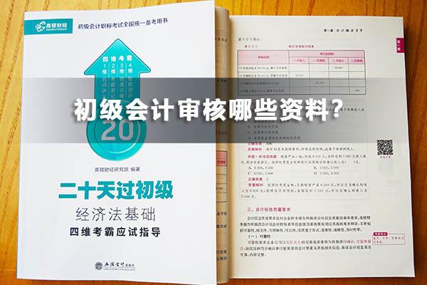 初级会计审核哪些资料?