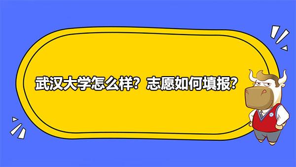 武汉大学,志愿