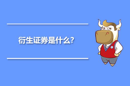 衍生证券是什么?