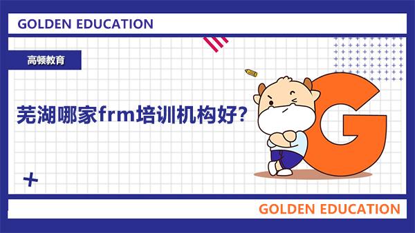 芜湖哪家frm培训机构好?