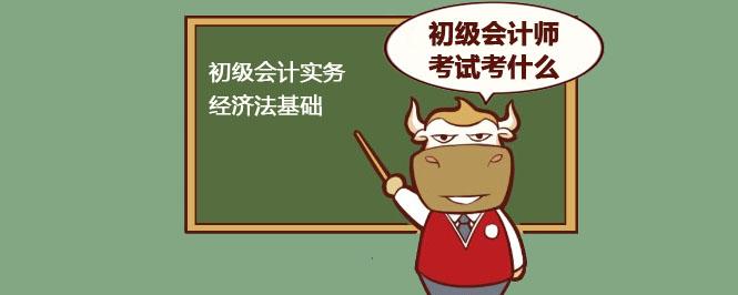 初级会计师考试考什么