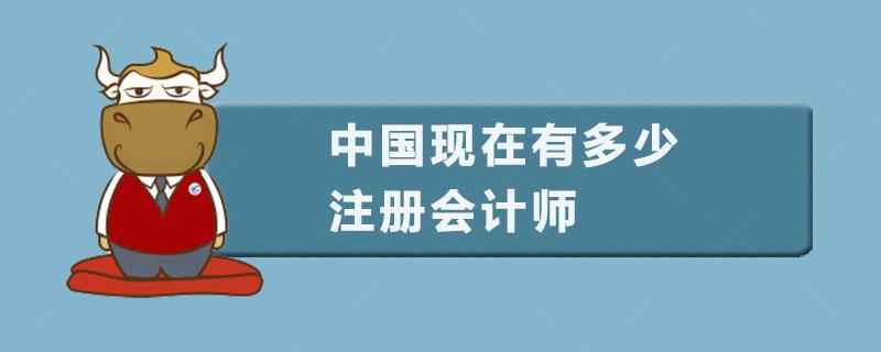 中国现在有多少注册会计师