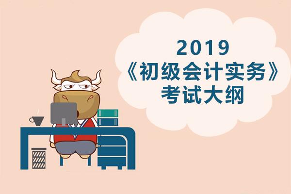 2019年初级会计职称《初级会计实务》考试大纲