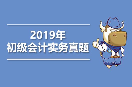 2019年《初级会计实务》考试真题+答案+解析【5月13日】
