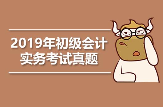 2019年《初级会计实务》考试真题+答案+解析【5月15日】
