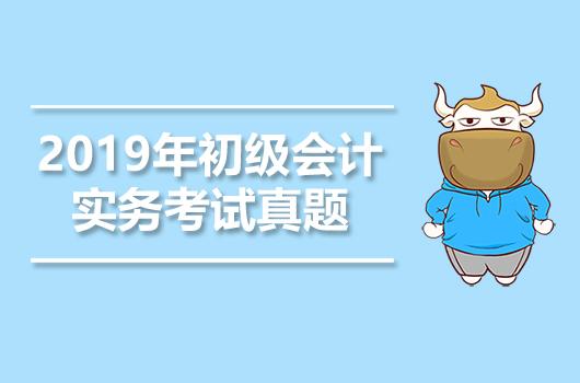2019年《初级会计实务》考试真题+答案+解析【5月18日】