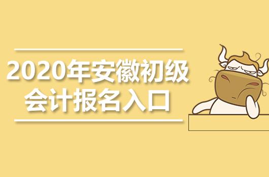 2020年安徽初级会计职称报名入口官网是什么
