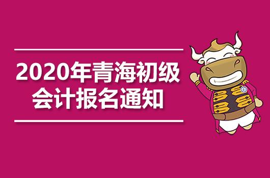 2020年青海初级会计职称考试报名事宜通知