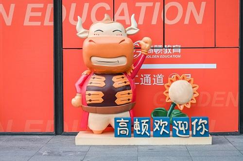 USCPA會計發展有哪些就業方向?USCPA在中國受到認可嗎?