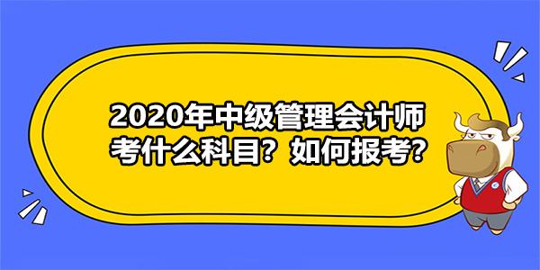 2020年中级管理会计师考什么科目?如何报考?