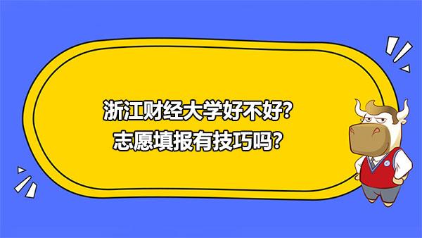 浙江财经大学,志愿填报