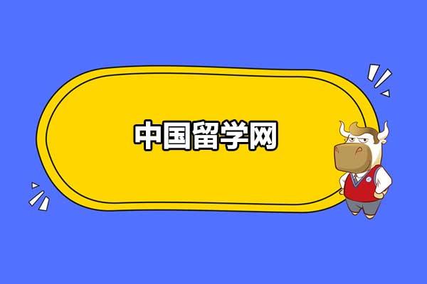 中国留学网能提供什么服务?