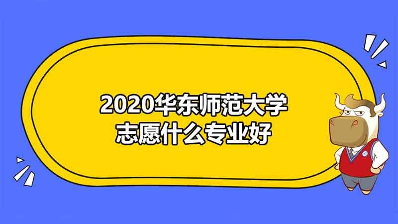 2020华东师范大学志愿什么专业好
