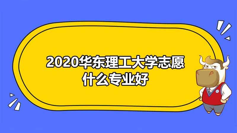 2020华东理工大学志愿什么专业好