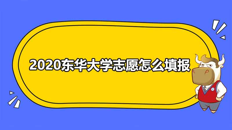 2020东华大学志愿怎么填报