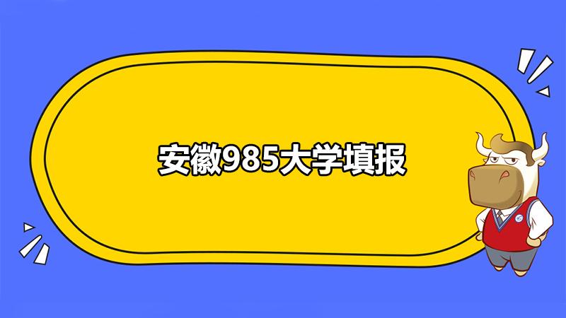 安徽985大学填报