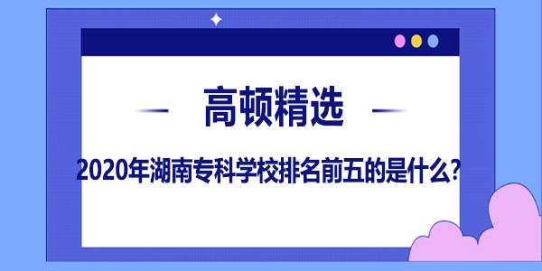 2020年湖南专科学校排名前五的是什么?