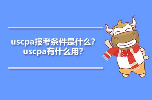 uscpa报考条件是什么?uscpa有什么用?