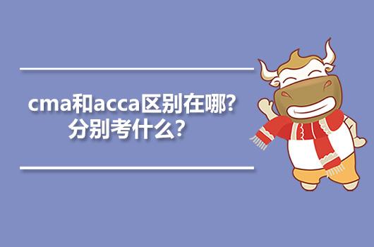 cma和acca区别在哪?分别考什么?