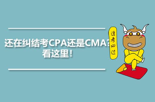 还在纠结考CPA还是CMA?看这里!