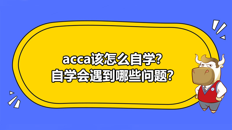 ACCA该怎么自学?自学会遇到哪些问题