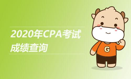 2020年CPA考试成绩查询
