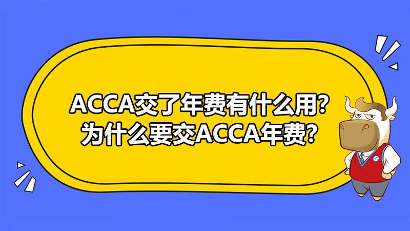 ACCA交了年費有什么用?為什么要交ACCA年費?
