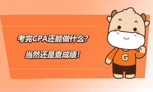 考完CPA还能做什么?当然还是查成绩!2020CPA查分!