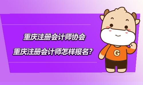 重庆注册会计师协会,2021重庆注册会计师怎样报名?