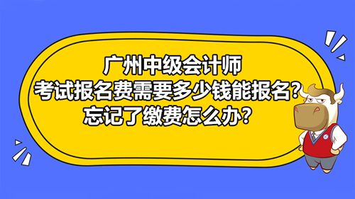廣州2021中級會計師考試報名費需要多少錢能報名?忘記了繳費怎么辦?
