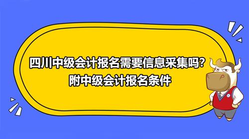 2021四川中级会计报名需要信息采集吗?附中级会计报名条件