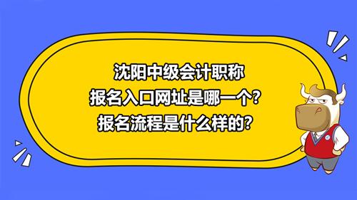 2021沈阳中级会计职称报名入口网址是哪一个?报名流程是什么样的?
