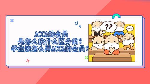 ACCA的会员是怎么按什么区分的?学生该怎么弄ACCA的会员?