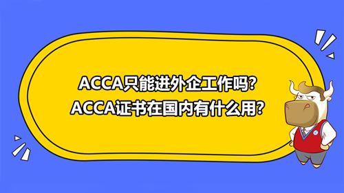 ACCA只能进外企工作吗?ACCA证书在国内有什么用?