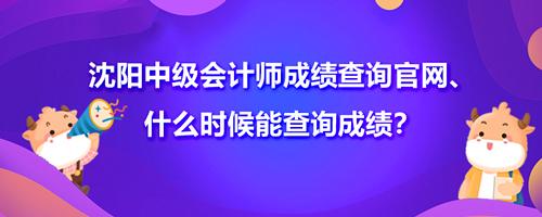 沈阳2021中级会计师成绩查询官网、什么时候能查询成绩?