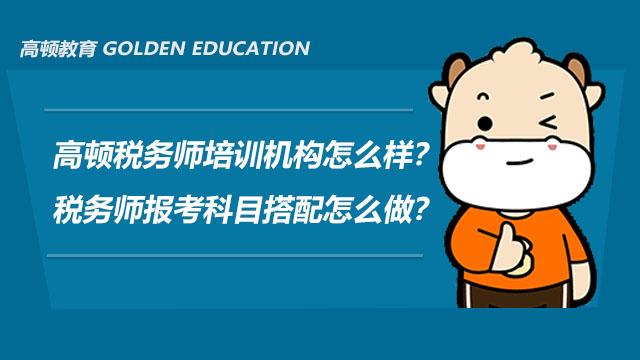 高顿税务师培训机构怎么样?税务师报考科目搭配怎么做?