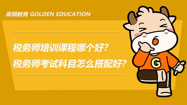 税务师培训课程哪个好?税务师考试科目怎么搭配好?
