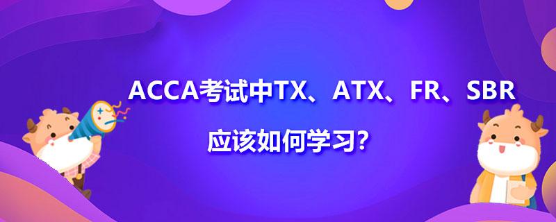 ACCA考试中TX、ATX、FR、SBR、FM、AFM应该如何学习?