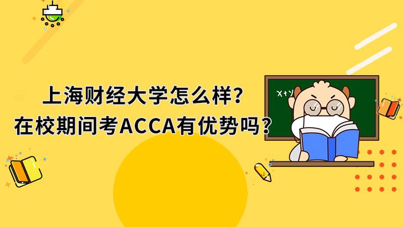 上海财经大学怎么样?在校期间考ACCA有优势吗?