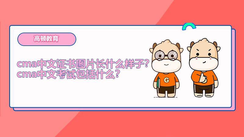 cma中文证书图片长什么样子?cma中文考试包括什么?