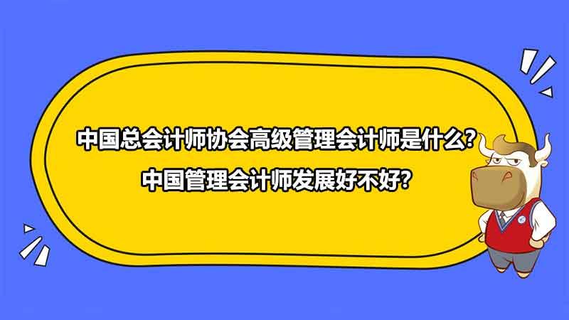 中国总会计师协会高级管理会计师是什么?中国管理会计师发展好不好?