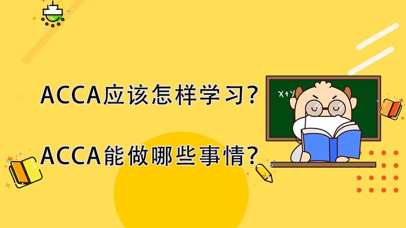 ACCA应该怎样学习?ACCA能做哪些事情?