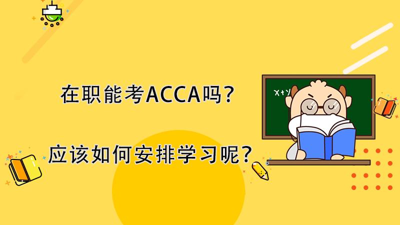 在职能考ACCA吗?如何安排ACCA学习呢?