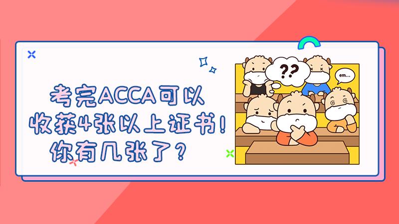 考完ACCA可以收获4张以上证书!你有几张了?
