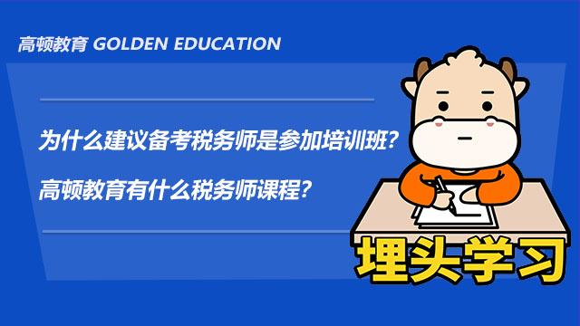 为什么建议备考税务师是参加培训班?高顿教育有什么税务师课程?
